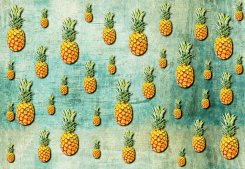 Tropical Pineapples