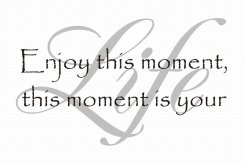 Enjoy this moment this moment is your Life