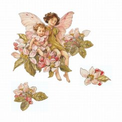 Apple Blossom Fairies